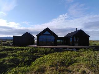 X35 Современный дом в скандинавском стиле фото 3